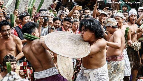 فستیوال جنگیدن نوجوانان با برگهای گیاه پاندانوس